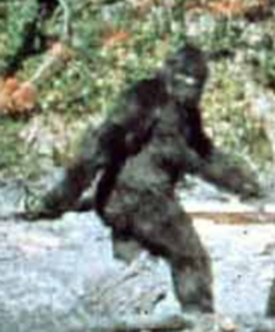 fc76/1242063509-bigfoot.jpg
