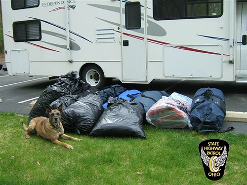 This is what 238 pounds of pot and a cute police dog look like.