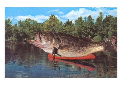 Oh, the giant Asian carp will take over your canoe. Don't think it wont