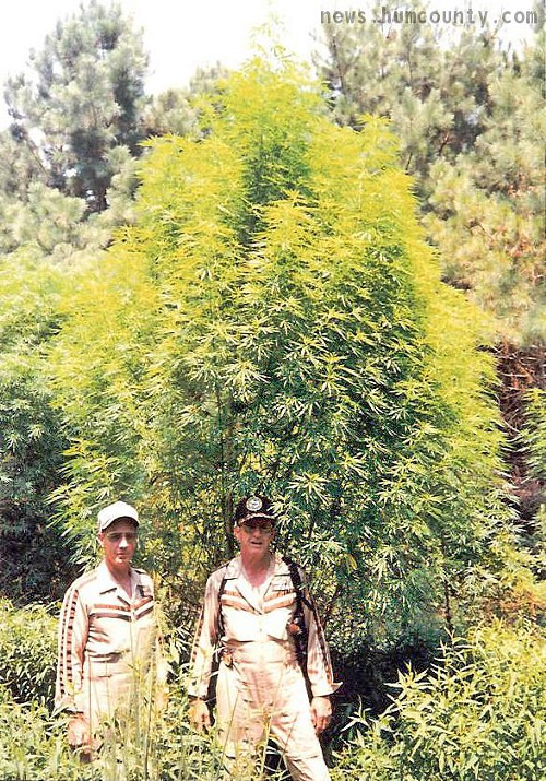Wonder if they encountered any plants this big?