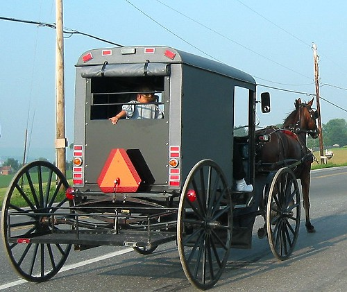Just because theyre Amish doesnt mean they want to see your penis.