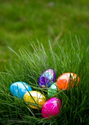 2301076-plastic-colorful-easter-eggs-in-grass.jpg