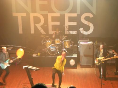 neon_trees.JPG